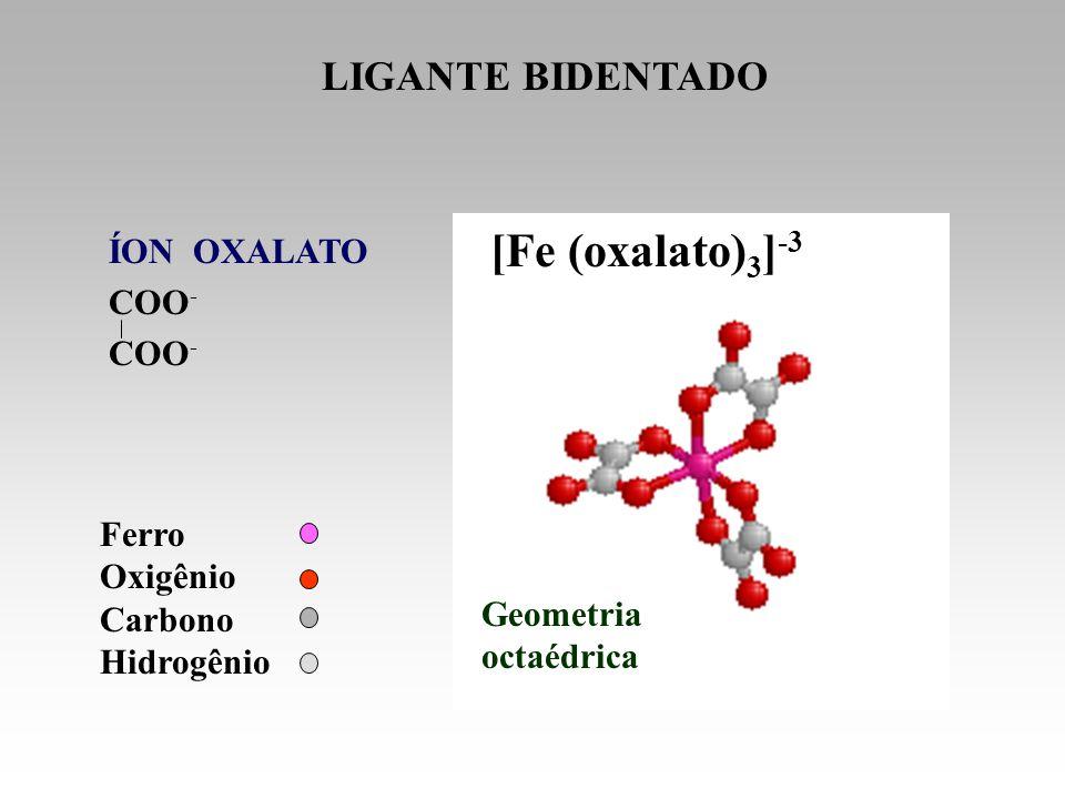 [Fe (oxalato)3]-3 LIGANTE BIDENTADO ÍON OXALATO COO- Ferro Oxigênio